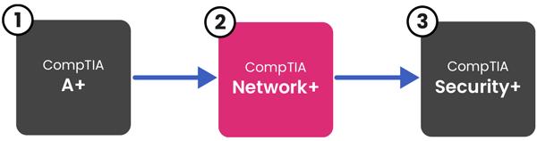 networkplus-pathway